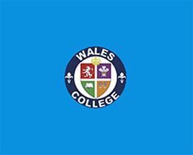 Wales高中